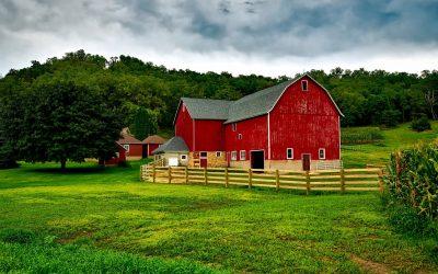 Het overnemen van een boerenbedrijf: de belangrijkste adviezen