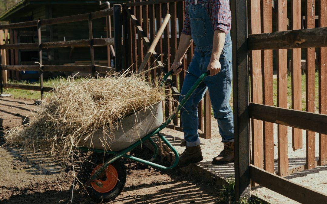 Waarom een kruiwagen onmisbaar is op een boerderij